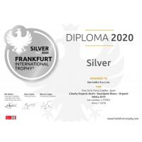 Urkunde Frankfurter International Trophy Silber 2020